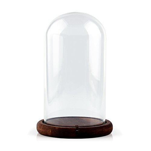 Glass Cloche Bell Jar - 9