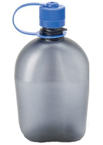 Nalgene BPA Free Tritan Oasis Canteen 32 Oz Narrow Mouth Bottle, Gray