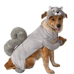 Squirrel Dog Costume Size Xs  sc 1 st  Amazon.com & Amazon.com : Squirrel Dog Costume Size Xs : Pet Costumes : Pet Supplies