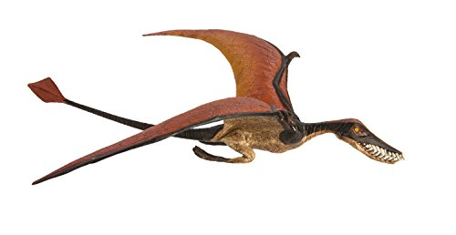 Safari Ltd  Wild Safari Rhamphorhynchus