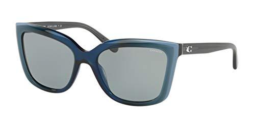 Sunglasses Coach HC 8261 553387 BLUE LAMINATE (Blue Coach Sunglasses)
