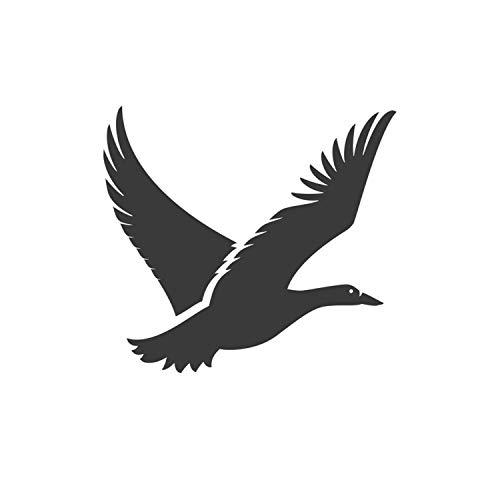 lil quack - 2
