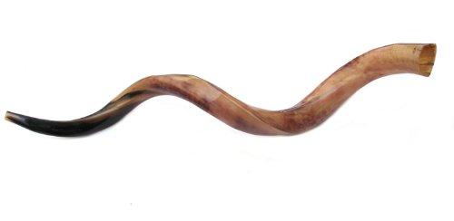 "45""- 46"" Jumbo Yemenite Kudu Horn Polished Shofar by Peer Hastam, with Anti Odor Spray, Made in Israel"