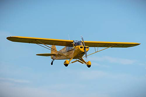 (Photography Poster - Piper Cub, Aircraft, Propeller, 24