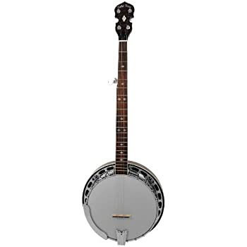 Gold Tone BG-250 Bluegrass Special Banjo Wide (Five String, Vintage Brown)