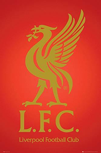 England Liverpool English Soccer Football Club Crest Logo (2012-2013) Sports Fan Poster Print 24x36