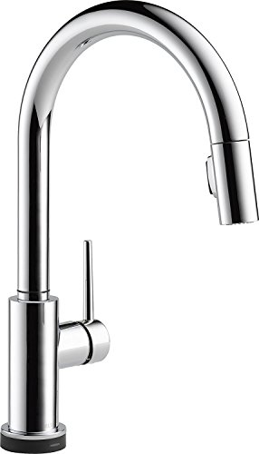 Delta Faucet Trinsic Single-Handle Touch Kitchen Sink Faucet with Pull Down Sprayer and TouchIQ Alexa Voice-Activated Technology, Chrome 9159TV-DST