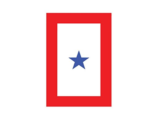 TrendyLuz Flags Blue Star Service 1 Star Military 12x18 Inch Garden Flag