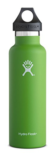 Hydro Flask 24 oz Vacuum Insulated Stainless Steel Water Bottle, Standard Mouth w/Loop Cap, Kiwi