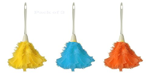 Supply Guru Genuine Feather Hand Dusters, Hanging Loop, Feathers Dyed Assorted Colors Pack Of 3