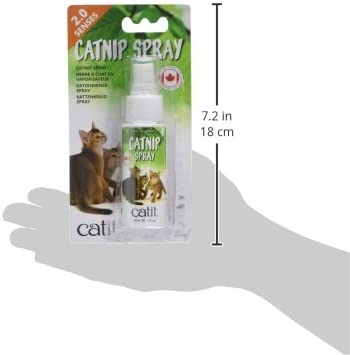 Catit Catnip Spray, 60 ml: Amazon.es: Productos para mascotas