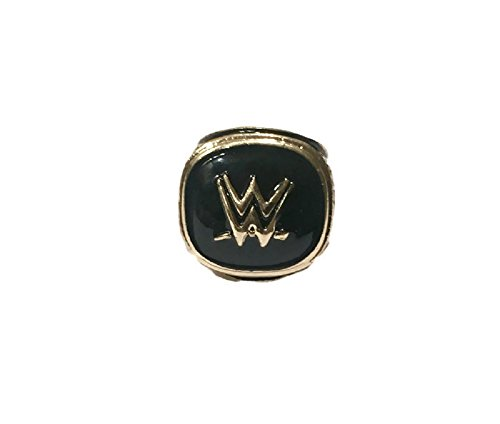 WWE HALL OF FAME REPLICA RING SIZE 11 by CUSTOM