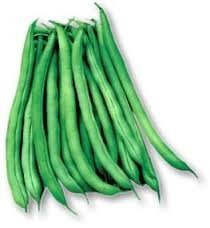 Blue Lake 274 Bush Bean Seeds - 25 grams - Blue Lake 274 Bean Snap Shopping Results