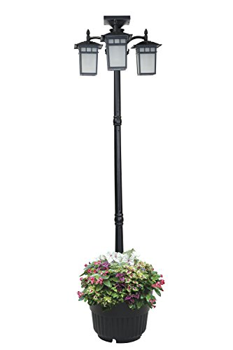 Outdoor Lamp Post Planter in Florida - 9