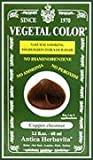 Herbatint Vegetal Hair Color Copper Chestnut -- 2 fl oz