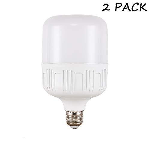 HQCHAN 30W High Power LED Bulb, 250W-300W Light Bulb Equivalent, Daylight White 6500K, E26 Medium Base, 3000 Lumens, High Watt Commercial Bulbs for Garage Warehouse, Workshop, Basement, Pack of 2