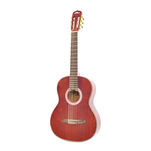 Pyle PGA32RBR - Classical Electric Acoustic Guitar - Built in Preamp and Pickup - Nylon Strings Ideal for Beginners - Mahogany