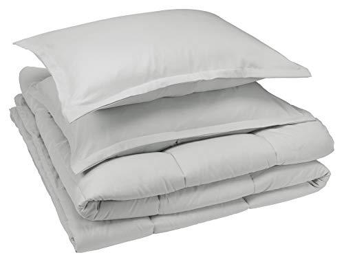 AmazonBasics Comforter Set, Full / Queen, Light Grey, Microfiber, Ultra-Soft (Comforter Light Set)