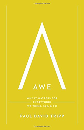 Awe: Why It Matters for Everything We Think, Say, and Do [Paul David Tripp] (Tapa Dura)
