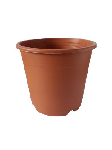 CAPPL Plastic Pot Round 27.5 Cm X 23 Cm (Pack of 6 ) Teracotta Colour Gardening (Garden & Outdoors) at amazon
