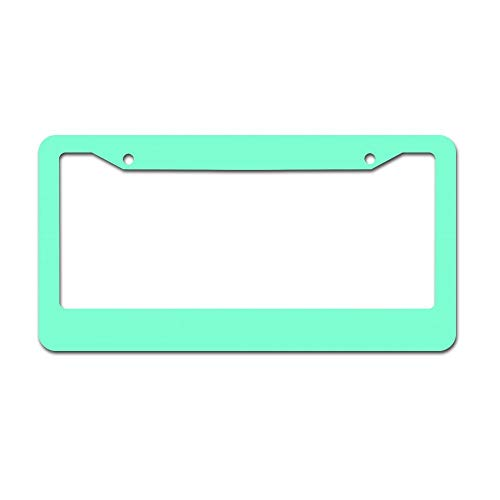 Cute Mint Green Heavy Duty Metal Chrome License Plate Cover for Car Front Back Decor Vanity Tag Gift