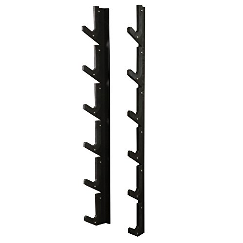 Valor Fitness BH-12 Valorpro Wall Mount bar Rack, Olympic by Valor Fitness