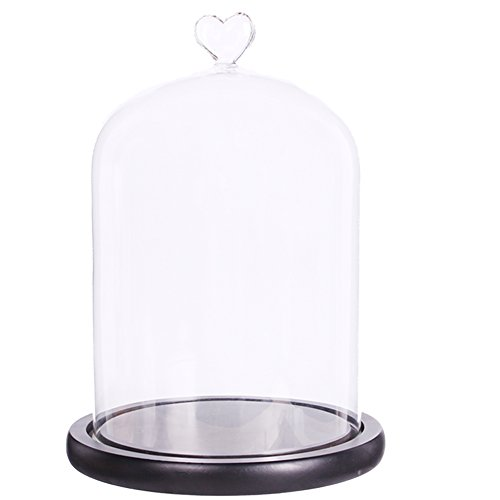 Moonlear Clear Glass Dome Display Case Heart Handle Cloche With wood Base Dia 6
