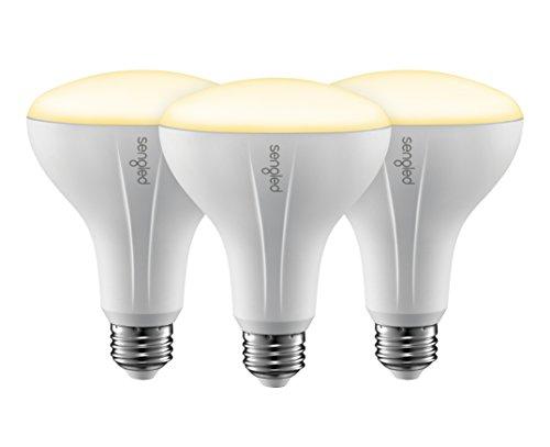 Flood Light Bulb Options