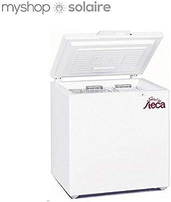 Energía Solar frigorífico 166l steca 12/24 V: Amazon.es: Iluminación