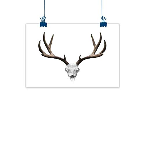 (Decorative Music Urban Graffiti Art Print Antlers Decor,A Deer Skull Skeleton Head Bone Halloween Weathered Hunter Collection, for Boys Room Baby Nursery Wall Decor Kids Room Boys Gift 48