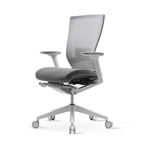SIDIZ T50 Home&Office Multifunction Ergonomic Swivel Task Chair (TNB500LDA): High Back, Mesh Back w/Lumbar Support, 3-Way Adjustable Arms, Adjustable Seat Slide/Slope (Gray)