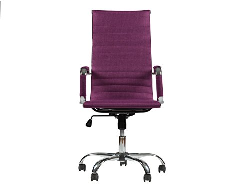 Winport Furniture TB-5050F High-Back Fabric Swivel Office & Home Desk/Task Chair, Purple