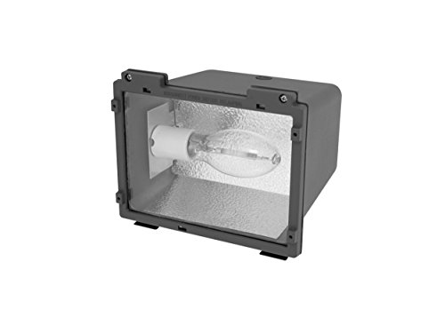 42 Watt Fluorescent Flood Light in US - 2