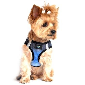 - American River Dog Harness Ombre Collection - Midnight Sky XX Small