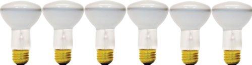 GE Lighting Soft White 14891 30-Watt, 140-Lumen R20 Floodlight Bulb with Medium Base, 6-Pack