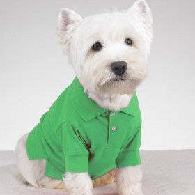 MEDIUM – GREEN – Preppy Polo Puppy Shirts, My Pet Supplies