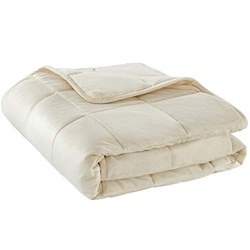 Cheap LOVTEX Reversible Micro-Plush Weighted Blanket - (12 lbs 48