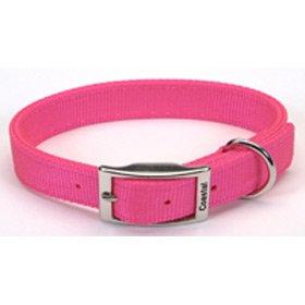 Coastal Pet Double-Ply Nylon Dog Collar (Neon Pink, 18 Inch L x 1 Inch W), My Pet Supplies