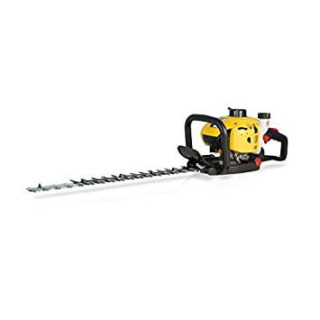 Cortasetos a gasolina Garland 2T - 22,5 cc - 60 cm: Amazon ...
