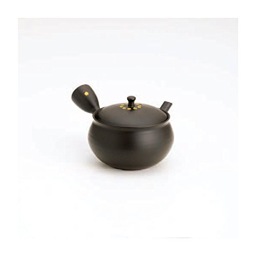 TOKYO MATCHA SELECTION - Tokoname kyusu - HOKURYU (290cc/ml) ceramic mesh - Japanese teapot [Standard ship by Int'l e-packet: with Tracking & Insurance]