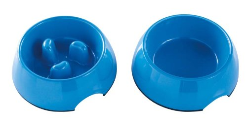 Whoa Buddy! Bowl with Bonus Water Bowl – – Size M