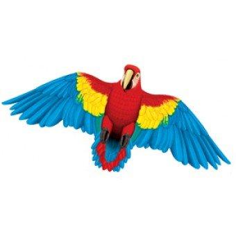 Parrot Kite - 4