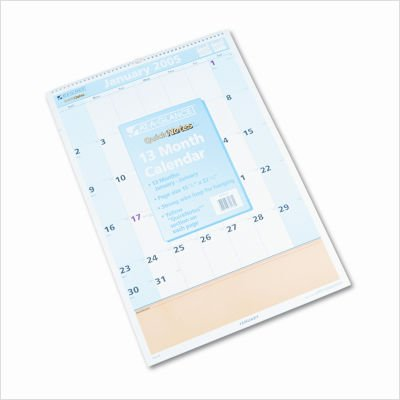 AT-A-GLANCE PM54-28 Quicknotes 13-Month (Jan.-Jan.) Wall Calendar for 2009, 15-1/2 X 22-3/4, ()