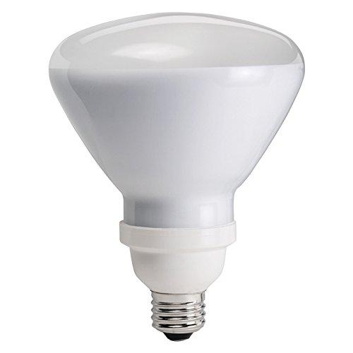 Philips Compact Fluorescent 20-Watt BR40 Flood Light Bulb, Dimmable (420000)