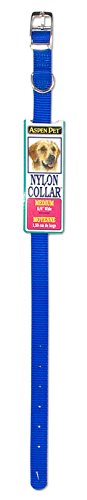 Petmate Aspen PET Products 15358 Nylon Dog Collar, 5/8 by 12-Inch, Blue (Aspen Petmate Leash)