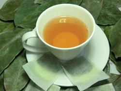 ooobies Stachelannone Graviola Tee Staubbeutel aus 100% Graviola Blätter Puder-40Teebeutel