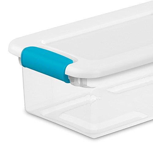 Sterilite and Blue Latching Storage Box