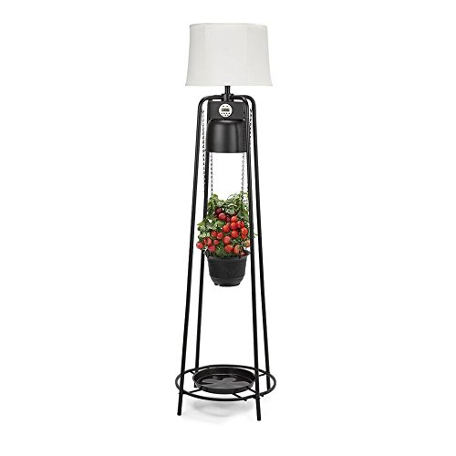 Catalina Lighting Glo Gro 45-Watt LED Grow Light, Étagère Floor Lamp with Adjustable Plant Housing and Integrated Timer, Black, 20745-000 by Catalina Lighting (Image #4)'