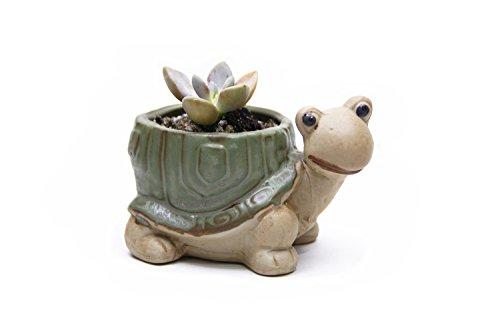 Goldblue Cute Animal Flower Pot Ceramic Succulent Pots Cactus Vase Flower Planter Pots (4.7Inch Tortoise)