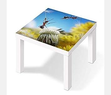 Möbelaufkleber para Ikea Laca Mesa 55x55cm Hormigas Moscas ...